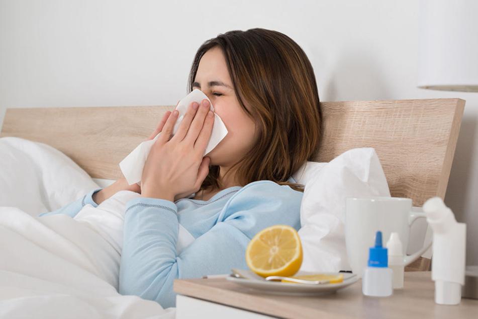 Wochenlang grassierte die Grippe in Sachsen, nun gehen die Krankmeldungen langsam zurück.