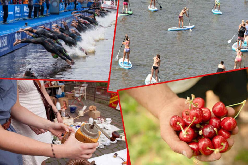 Triathlon, Kirschmarkt, SUP-Festival: Hier kommen unsere Tipps für Sonntag!