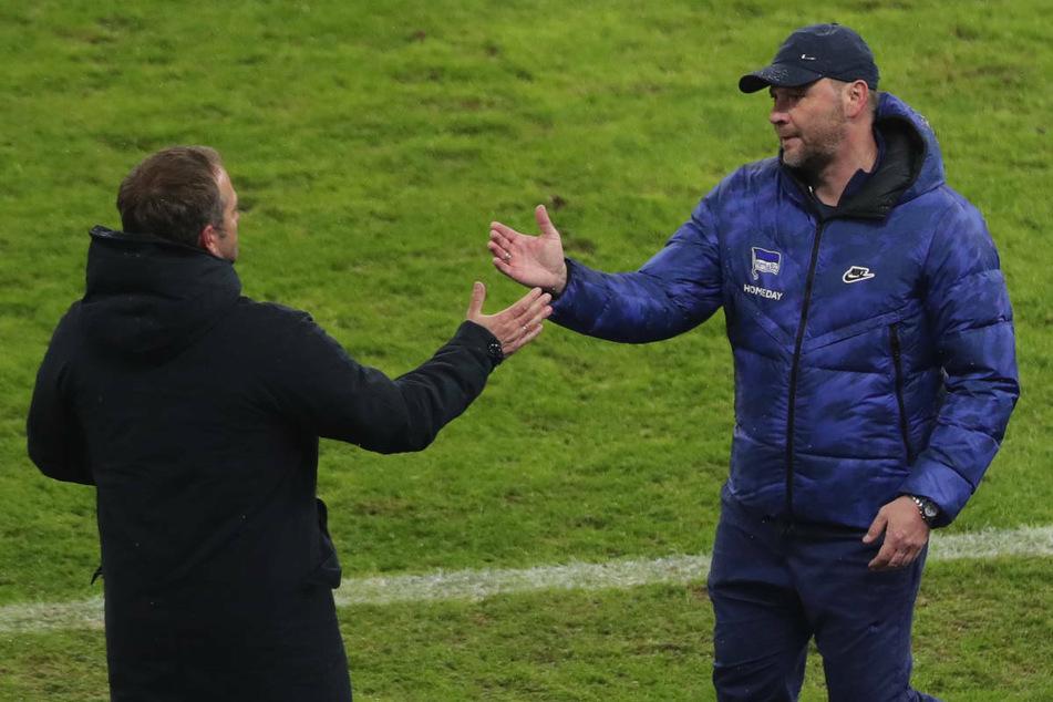 Nach dem Spiel gegen den FC Bayern München verabschiedet sich Hertha-Coach Pal Dardai (44, r.) von seinem Trainerkollegen Hansi Flick (56). Der Ungar schloss am Donnerstag eine Rückkehr von Vedad Ibisevic zu Hertha BSC aus.