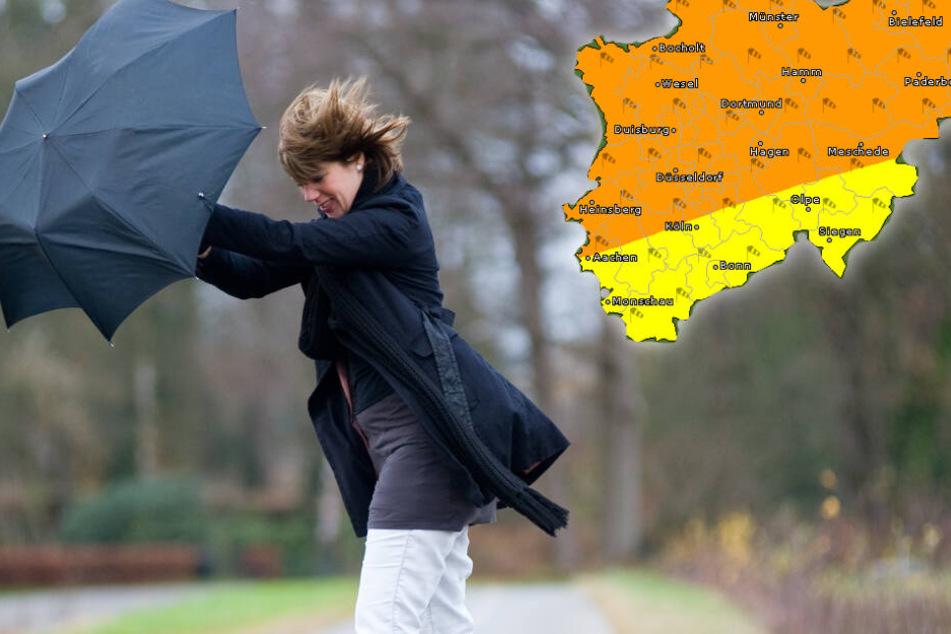 Achtung! Am Wochenende fegen Sturmböen über NRW hinweg