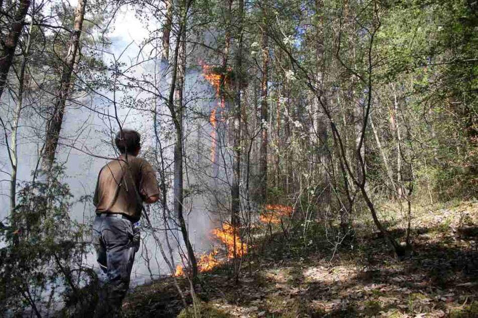 In Plaue wurde seit Mittwoch gegen das Feuer gekämpft.