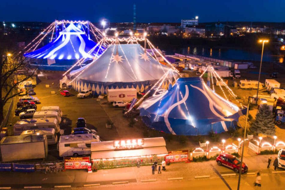 Der 24. Dresdner Weihnachts-Circus feiert am 18. Dezember Premiere.
