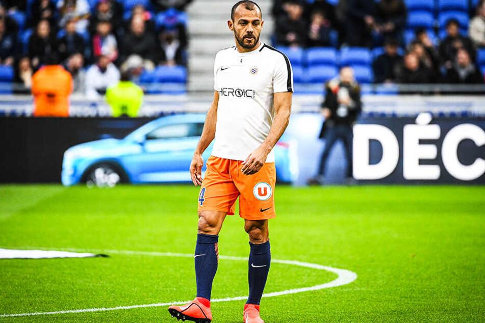 Hilton ist auch mit 41 Jahren noch Stammspieler beim aktuellen Tabellensechsten der ersten französischen Liga, dem HSC Montpellier.