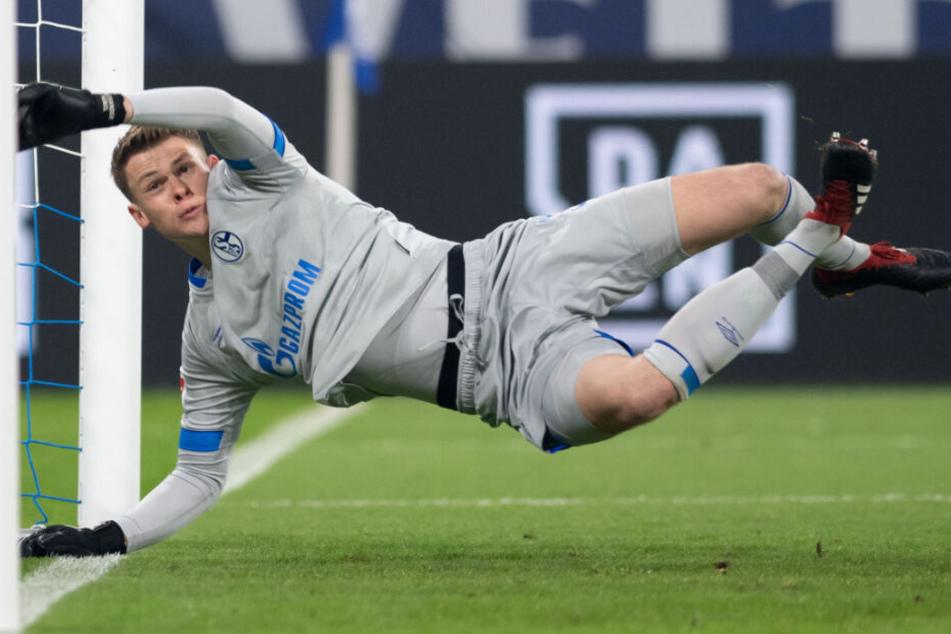 Alexander Nübel zeigte beim FC Schalke 04 zuletzt mehr als starke Leistungen.