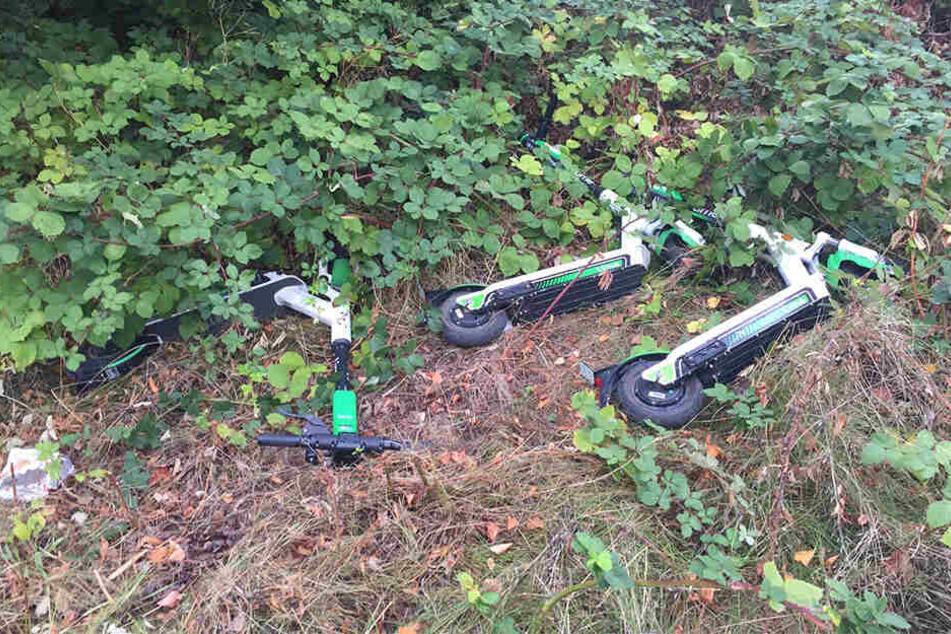 Am Plauenschen Ring wurden die Scooter sogar achtlos ins Gebüsch geschmissen.