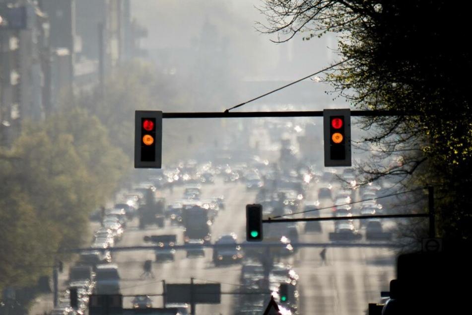 Schock-Studie: Leben in der Großstadt macht dumm und ist gesundheitsschädigend