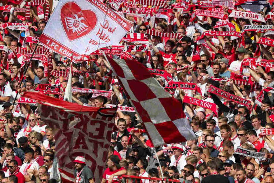 Die Fans des 1. FC Köln zeigten sich nicht gerade von ihrer besten Seite.