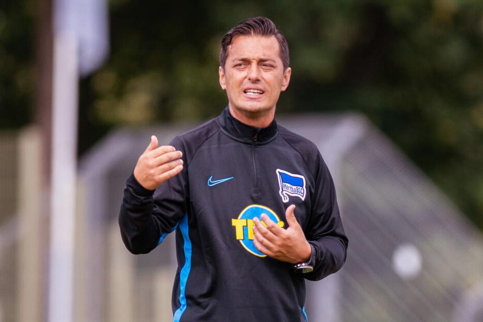 Will seiner Mannschaft einen neuen Spielstil implizieren: Hertha-Trainer Ante Covic.