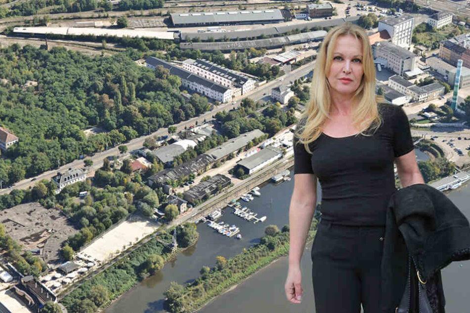 Was wird nun aus Marina Garden und Hafencity?