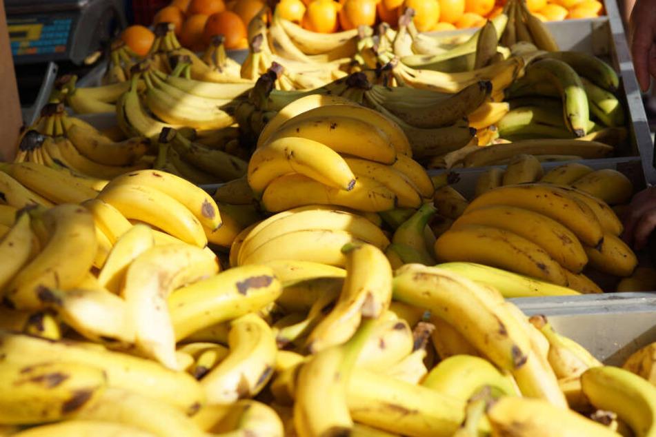 Den berauschenden Fund machten die Ermittler in mehreren Bananenkisten (Symbolbild).