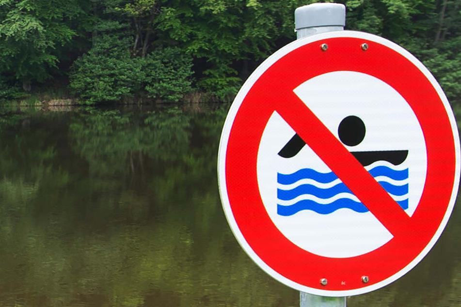 In einem See im Freistaat Bayern wurden Blaualgen nachgewiesen. (Symbolbild)