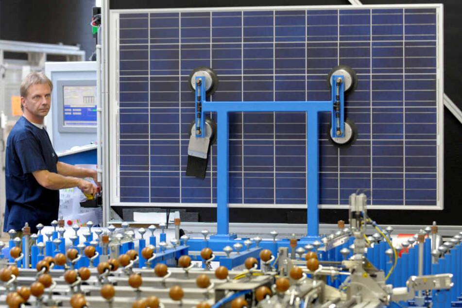Die Dresdner Firma Solarwatt strebt einen satten Umsatzgewinn im Vergleich zum Vorjahr an.