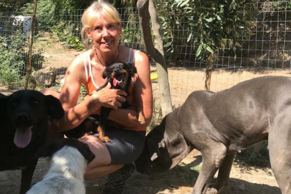 Ciao Bello! Nach Coronapause rettet Leipzigerin wieder Hunde aus Italien