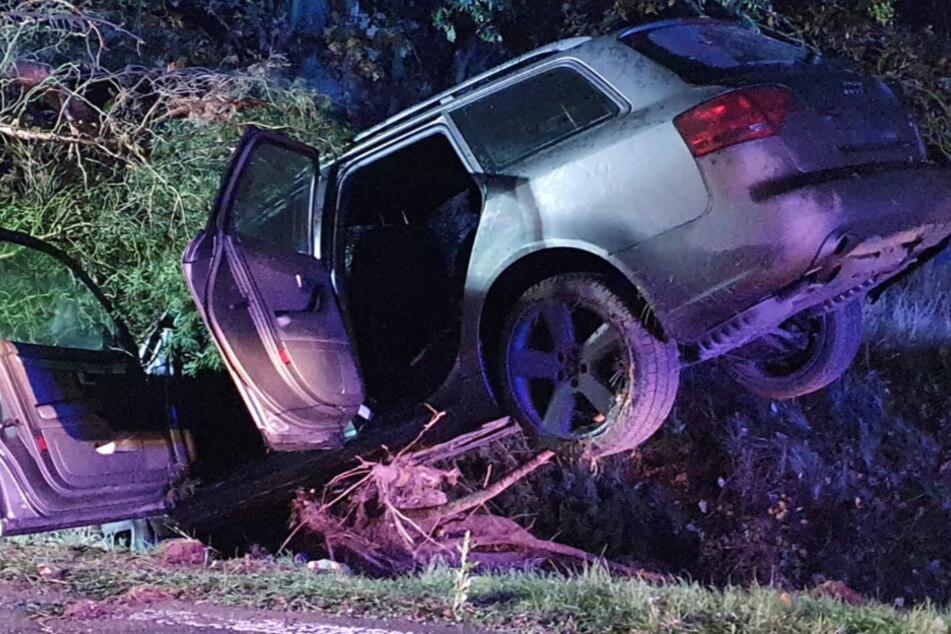 Auto kracht gegen Baum, doch von den Unfallopfern fehlt jede Spur