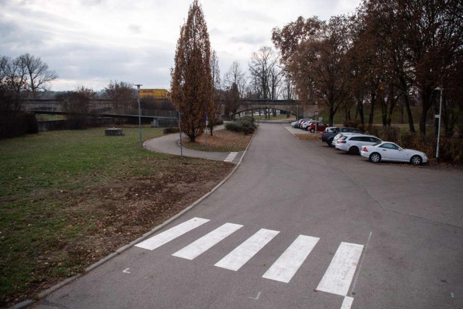 Nur ein kurzes Stück über die Grünfläche, dann erreicht man den Fußweg zur Neckarbrücke.