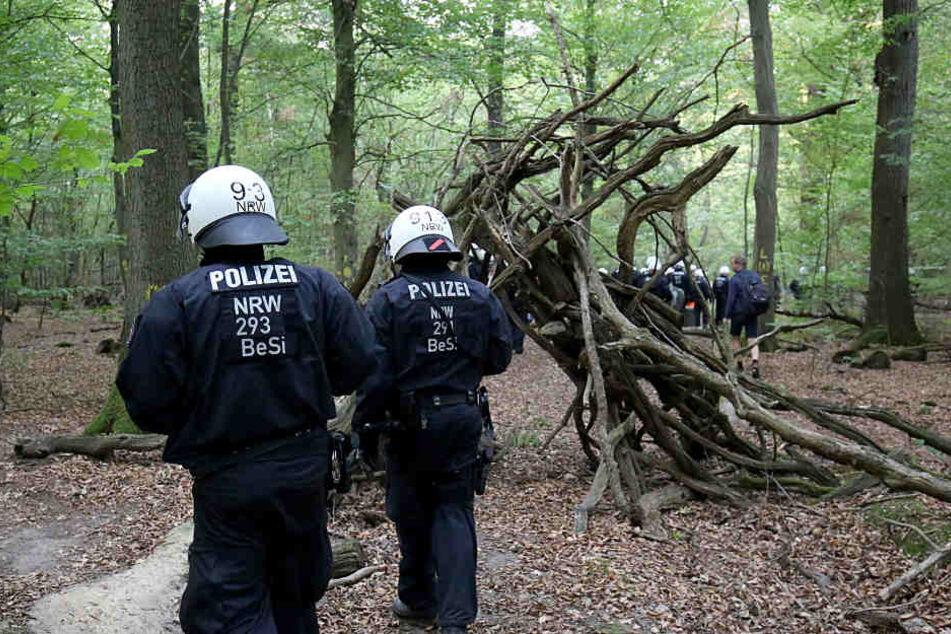 Streit um Waldstück eskaliert: Polizei rückt in Hambacher Forst ein
