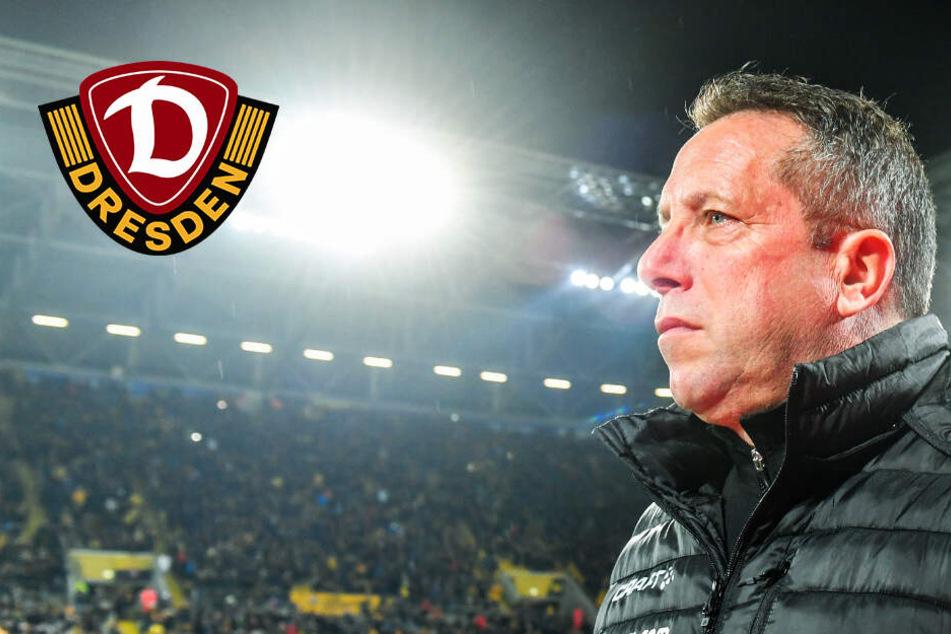 Dynamo-Coach Kauczinski wird heute 50! Das Team soll ihn erst gegen Bochum beschenken