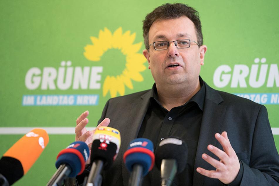 Mehrdad Mostofizadeh (48) möchte nicht mehr der Vorsitzende der Grünen sein.