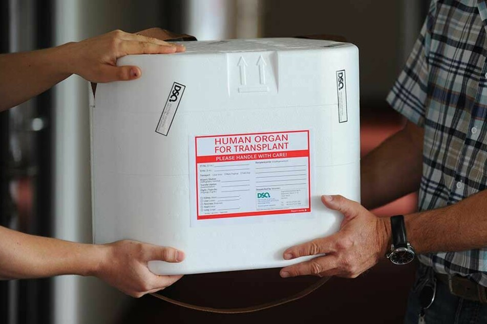 Eine Organtransportbox wird in den Räumen der Deutschen Stiftung Organtransplantation (DSO) in Berlin übergeben.