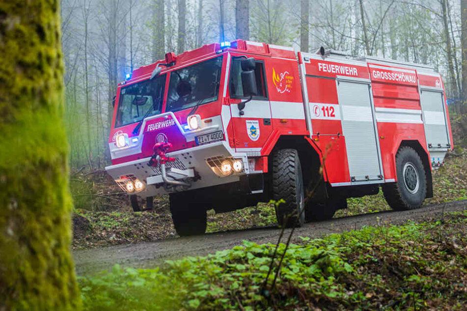 Bullig, wendig, relativ flach: Im Wald spielt das tschechische Löschfahrzeug  seine Vorteile souverän aus.