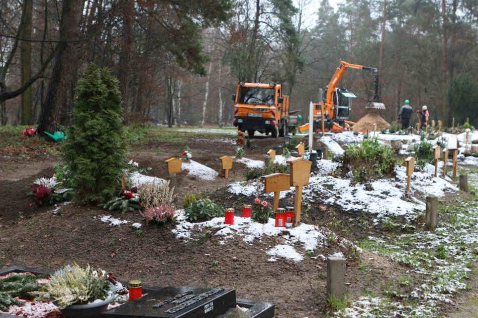 Zahlreiche Gräber wurden verwüstet.