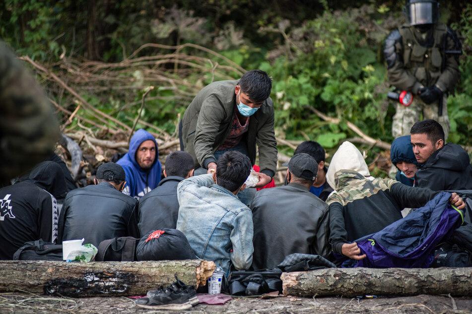 Immer mehr Flüchtlinge versuchen, über Belarus zunächst nach Polen, Lettland oder Litauen zu gelangen.