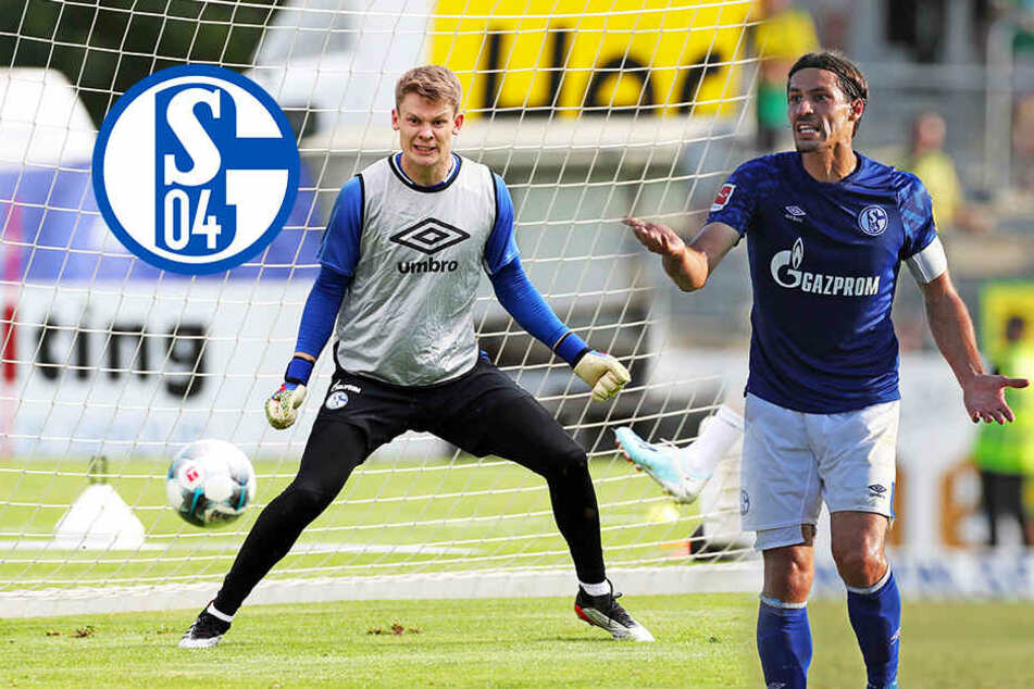 TAG24-Bundesliga-Analyse: FC Schalke 04 will zurück in die Erfolgsspur!