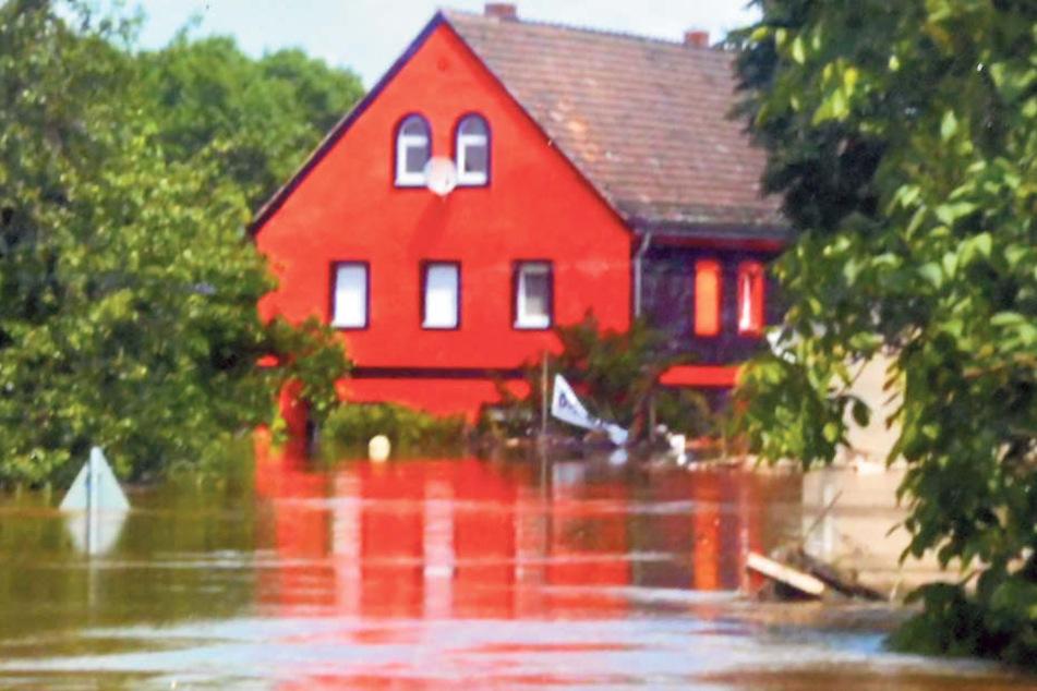 Dem großen Schicksalsschlag konnten sie noch Paroli bieten: So sah der Kunsthof zur Flut 2013 aus - im Elbwasser abgesoffen. Nach der Flut gab's ein Benefizkonzert.H