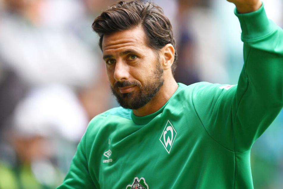 Claudio Pizarro könnte in Zukunft wieder für den FC Bayern München tätig sein.