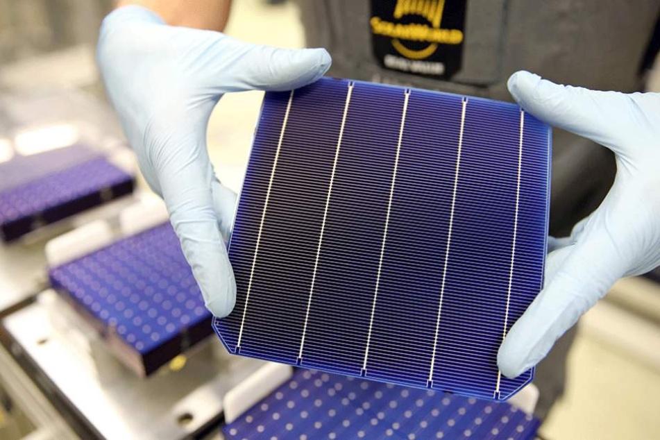 """in Mitarbeiter der Modulfertigung bei Solarworld zeigt eine sogenannte """"PERC-Zelle""""."""