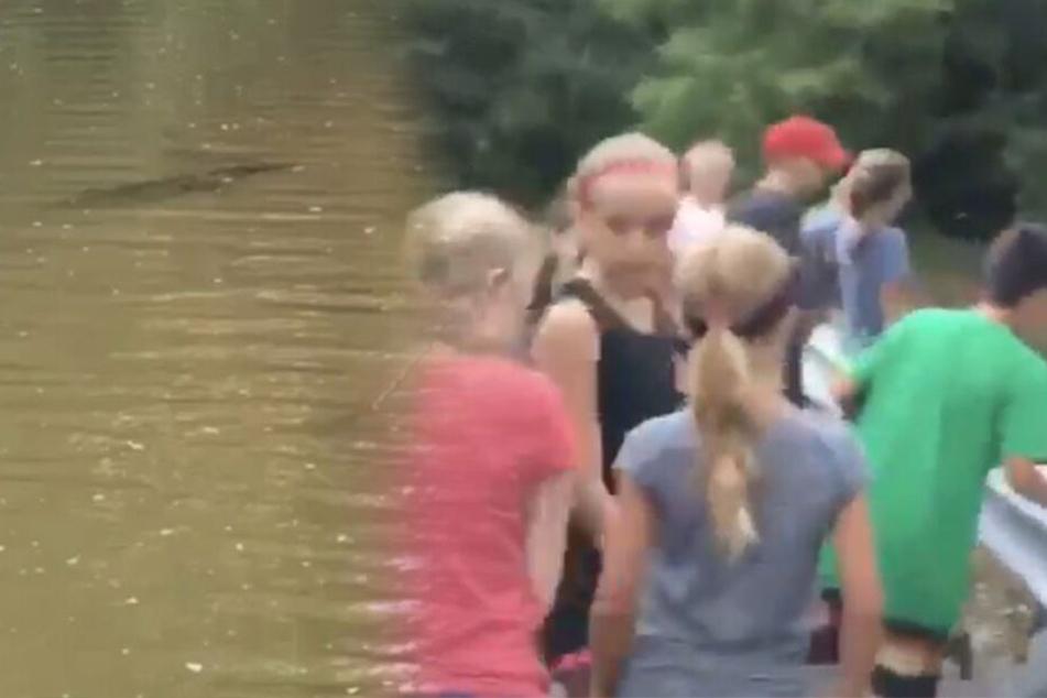 Betreuer lässt Schüler in Bach baden, als er plötzlich panisch losschreit