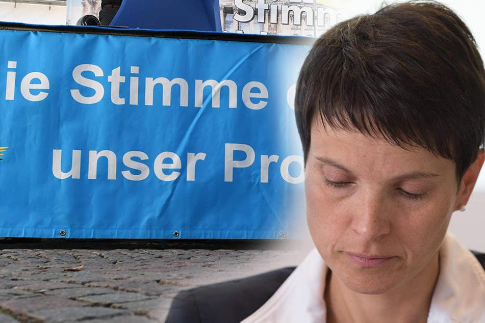 Für die AfD-Chefin Frauke Petry (42) könnte es kurz vor der Bundestagswahl doch noch eng werden.