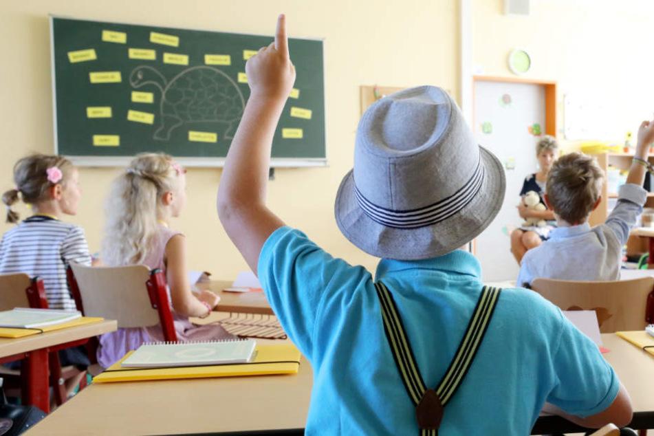 Pro Jahr sollen mehr als 800 neue Lehrer eingestellt werden.