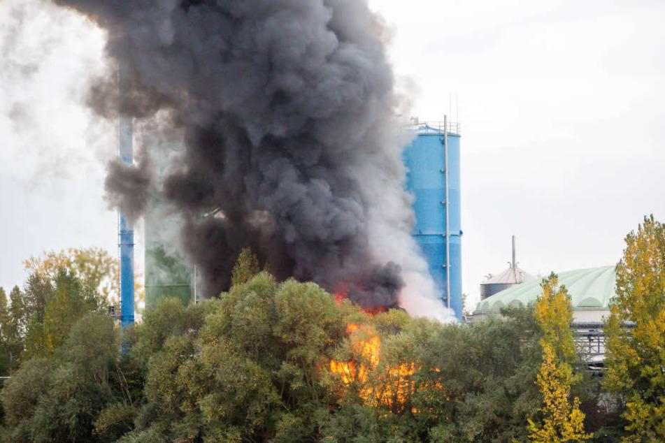 Gefährliche Chemikalien gerieten wohl in Brand.
