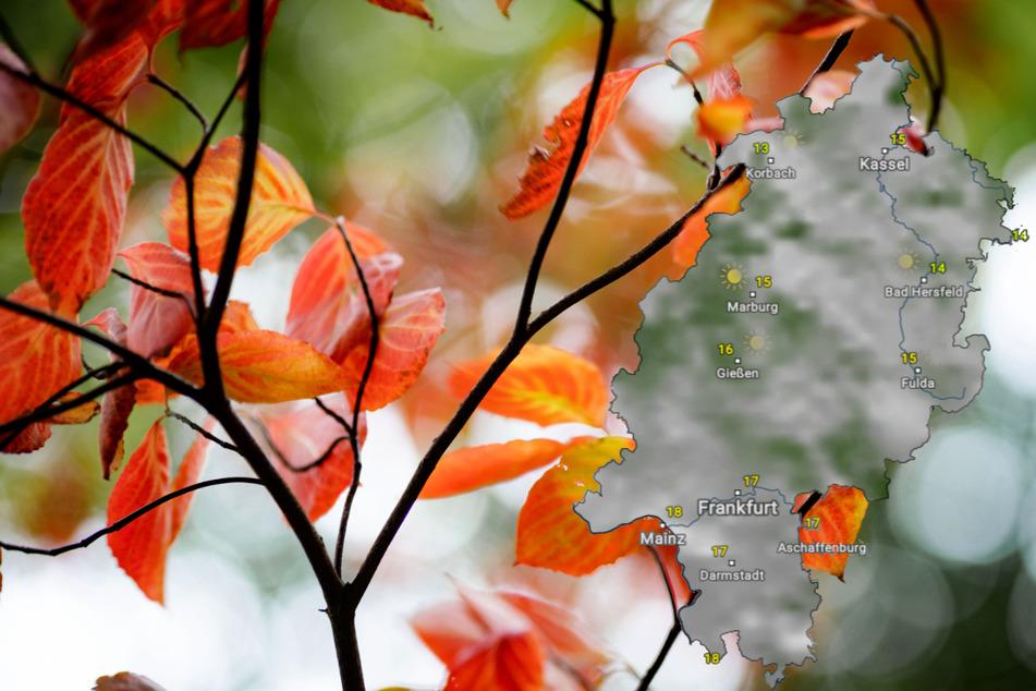 In dieser Woche weht sehr viel Herbststimmung durch Hessen. (Symbolbild)