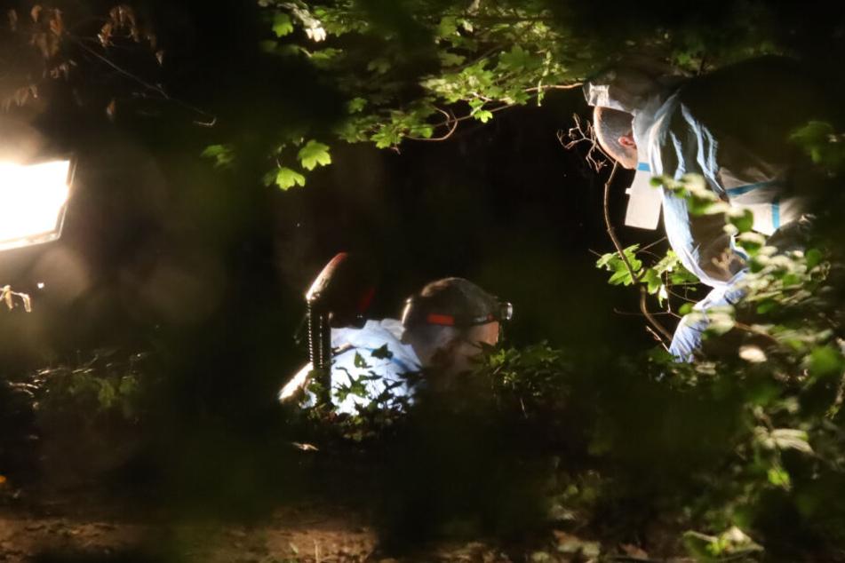 In Regensburg wurde in einem Gestrüpp eine männliche Leiche entdeckt.