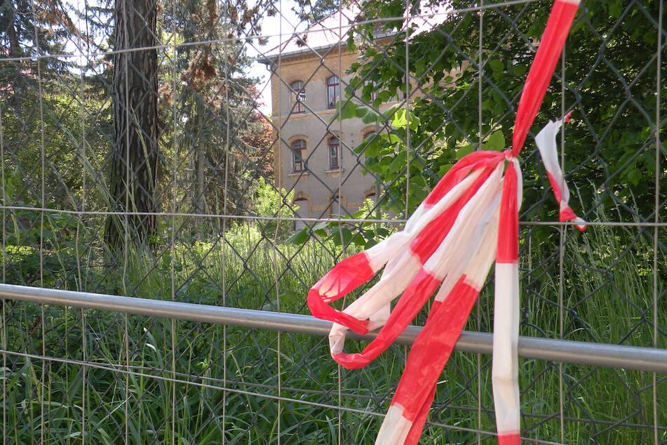 """Bauarbeiten für die """"Parkstadt Dösen"""" verzögern sich immer mehr - jetzt soll ein Baumgutachter kommen!"""