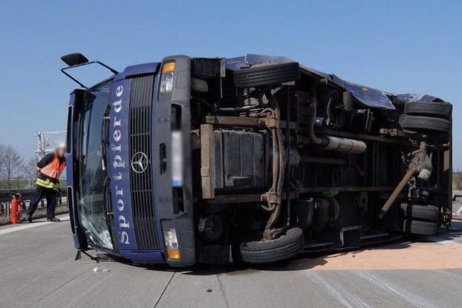 Unfall A12: Schwerer Unfall auf A12: Transporter mit Pferden kippt um
