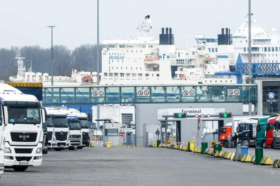 Ein Hafenmitarbeiter machte am Sonntagmorgen den schockierenden Fund am Skandinavienkai.