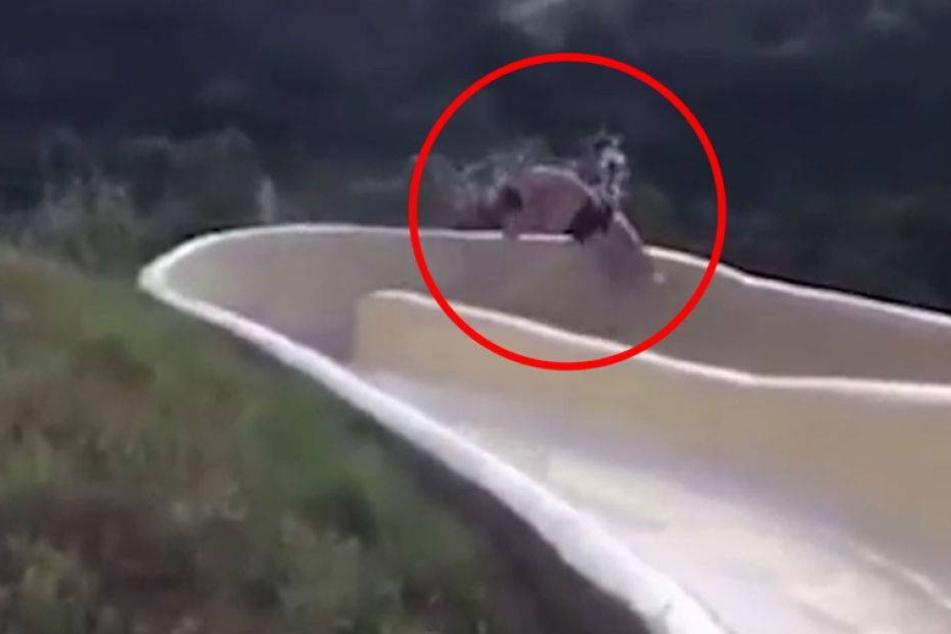 Horrorunfall: Mann fliegt aus Wasserrutsche