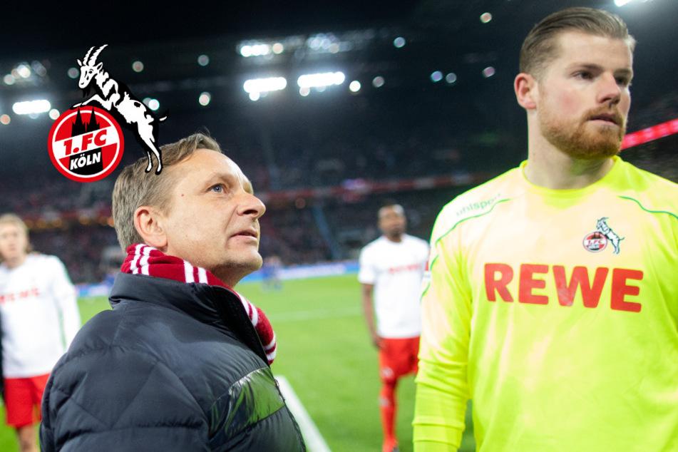 "1. FC Köln nach Morddrohung gegen Timo Horn: ""Sind kein Freiwild"""