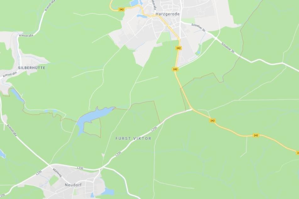 Der Mann hatte versucht, zwei Lkws auf der L235 zwischen Neudorf und Harzgerode zu überholen und war dabei mit einem Auto kollidiert. (Symbolbild)