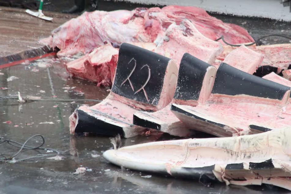 An Bord wurde der Wal zerlegt. Sein Fleisch soll nach Japan exportiert werden.
