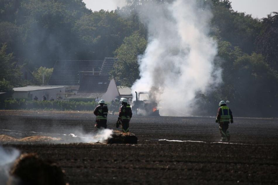 Großeinsatz: Feuerwehr kämpft gegen Flammenmeer auf Stoppelfeld