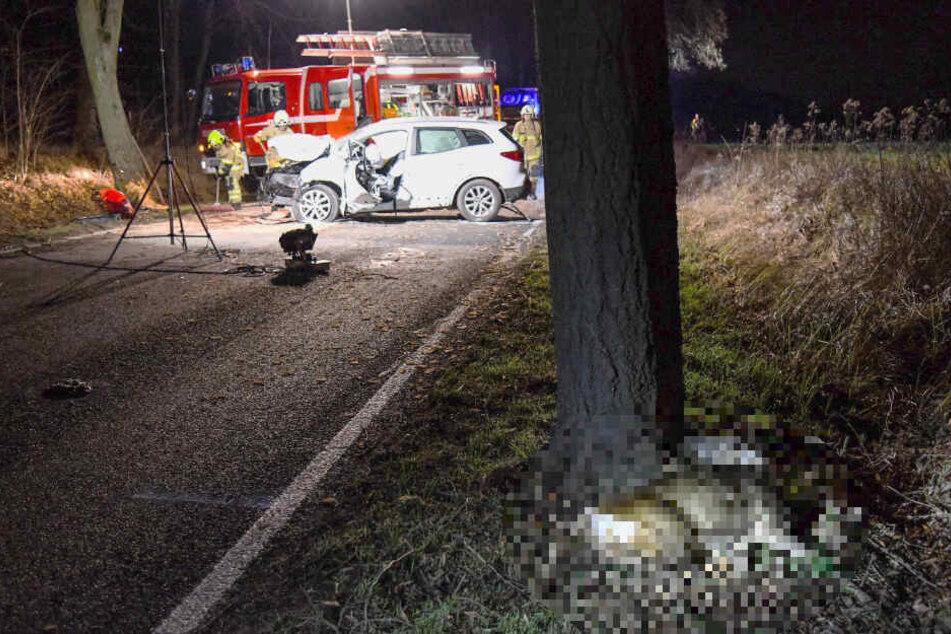 Das Reh überlebte den Aufprall nicht und verstarb noch am Unfallort.