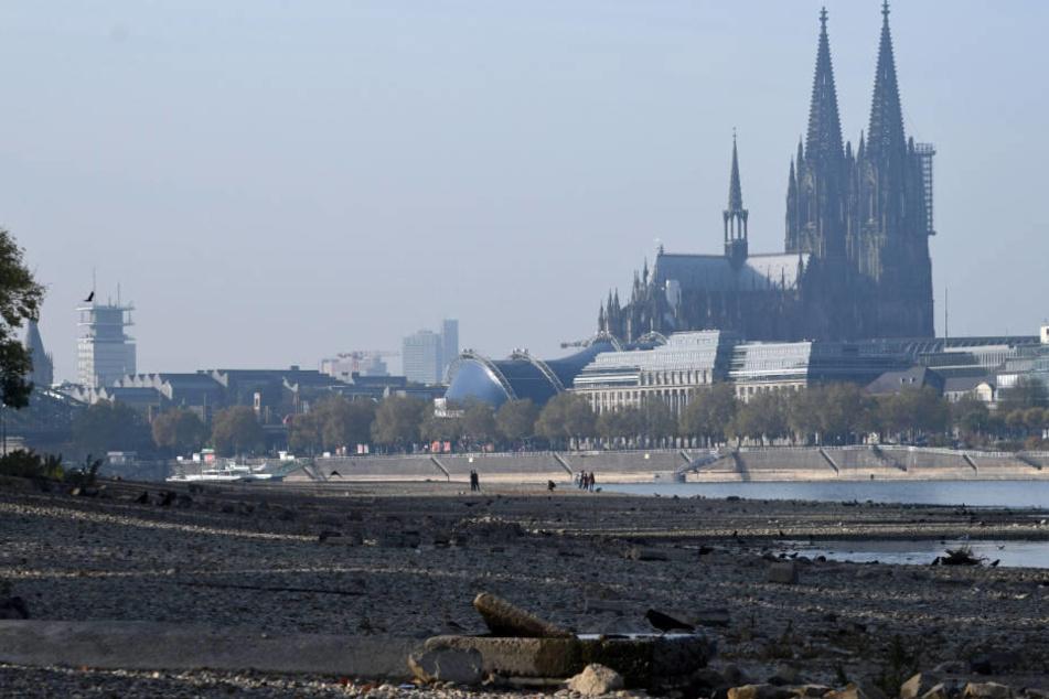Nach den Rekord-Tiefständen erholt sich die Lage im Rhein nun wieder.
