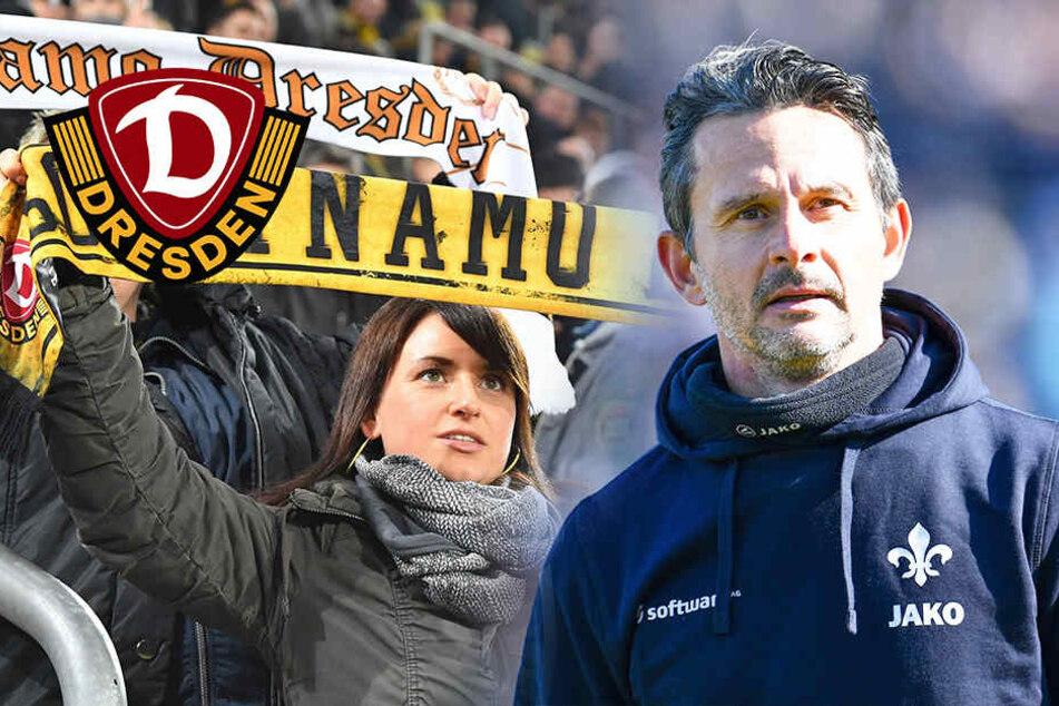 Darmstadts Schuster will Dynamo wehtun!