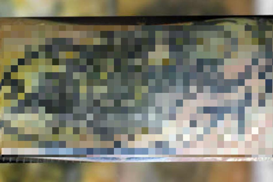 Diese Tätowierung fanden die Ermittler auf dem linken Oberarm.