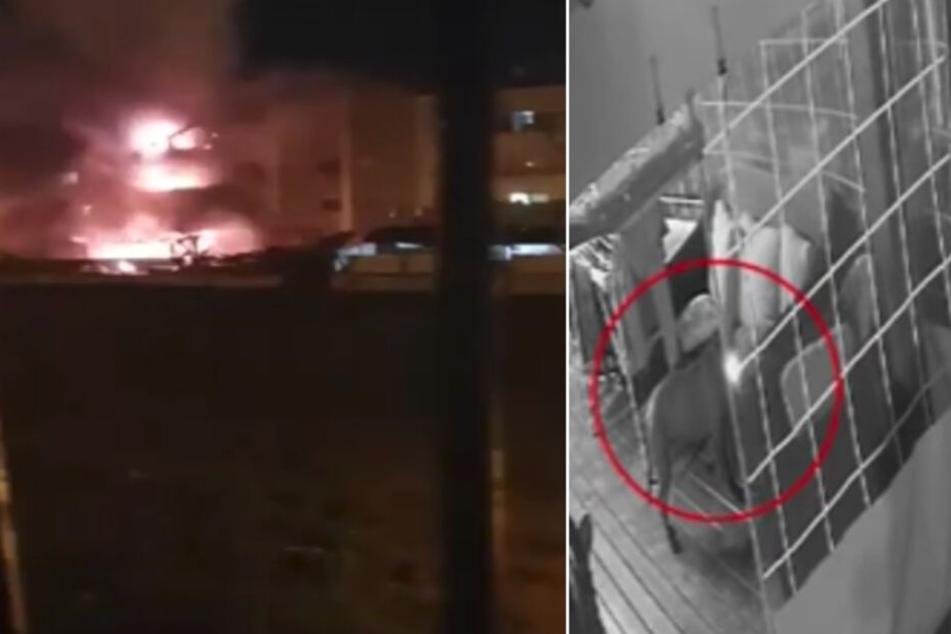 Hund spielt mit Feuerzeug und setzt Wohnblock in Brand