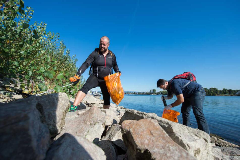 Ausgestattet mit Müllbeuteln und Handschuhen sammelten Helfer Müll entlang des Rheinufers.